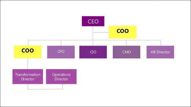CEO, CFO, CPO, CCO, CHRO, CMO có nghĩa gì?